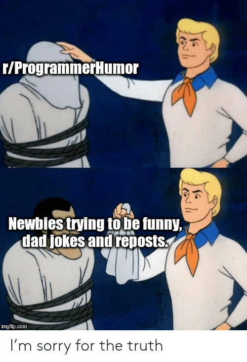 Dad, Funny, and Sorry: r/ProgrammerHumor  Newbies trying to be funny,  dad jokes and reposts  imgflip.com I'm sorry for the truth