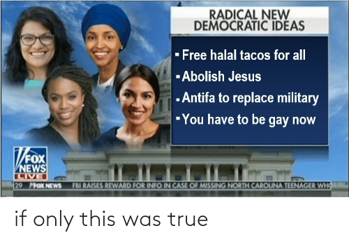 democratic: RADICAL NEW  DEMOCRATIC IDEAS  - Free halal tacos for all  -Abolish Jesus  - Antifa to replace military  -You have to be gay now  FOX  NEWS  LIVE  29 MFOX NEWS  FBI RAISES REWARD FOR INFO IN CASE OF MISSING NORTH CAROUNA TEENAGER WHO if only this was true