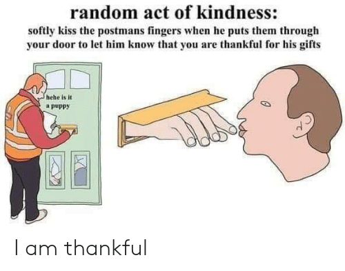 Kindness: random act of kindness:  softly kiss the postmans fingers when he puts them through  your door to let him know that you are thankful for his gifts  hehe is it  a puppy I am thankful