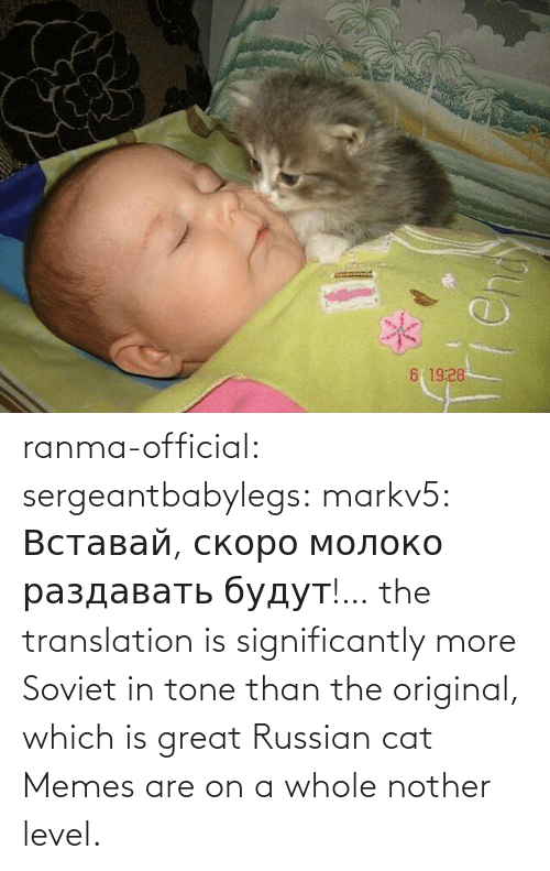 png: ranma-official: sergeantbabylegs:  markv5: Вставай, скоро молоко раздавать будут!…  the translation is significantly more Soviet in tone than the original, which is great    Russian cat Memes are on a whole nother level.