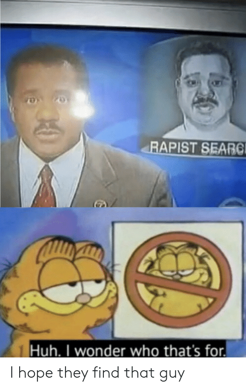 Huh, Hope, and Wonder: RAPIST SEARC  Huh. I wonder who that's for I hope they find that guy
