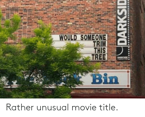 Title: Rather unusual movie title.
