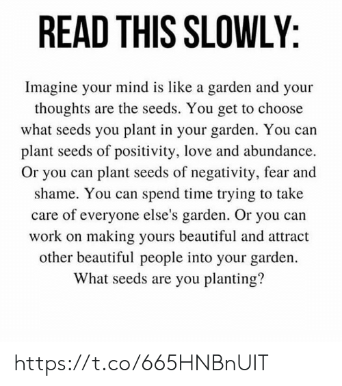Beautiful, Love, and Memes: READ THIS SLOWLY  Imagine your mind is like a garden and your  thoughts are the seeds. You get to choose  what seeds you plant in your garden. You can  plant seeds of positivity, love and abundance  Or you can plant seeds of negativity, fear and  shame. You can spend time trying to take  care of everyone else's garden. Or you can  work on making yours beautiful and attract  other beautiful people into your garden.  What seeds are you planting? https://t.co/665HNBnUIT