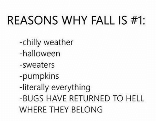 Fall, Halloween, and Memes: REASONS WHY FALL IS #1:  -chilly weather  -halloween  -sweaters  -pumpkins  -literally everything  -BUGS HAVE RETURNED TO HELL  WHERE THEY BELONG
