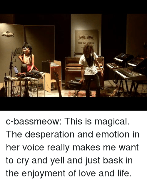 Desperation: Red Buil Studios c-bassmeow:  This is magical. The desperation and emotion in her voice really makes me want to cry and yell and just bask in the enjoyment of love and life.