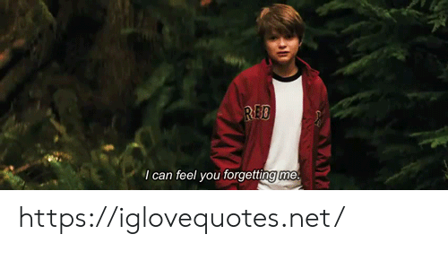Net, Red, and Can: RED  I can feel you forgetting me https://iglovequotes.net/