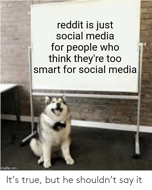 imgflip: reddit is just  social media  for people who  think they're too  smart for social media  imgflip.com It's true, but he shouldn't say it