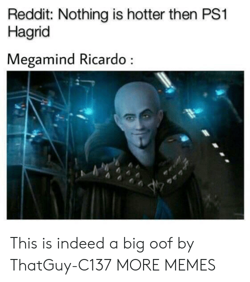 ricardo: Reddit: Nothing is hotter then PS1  Hagrid  Megamind Ricardo This is indeed a big oof by ThatGuy-C137 MORE MEMES