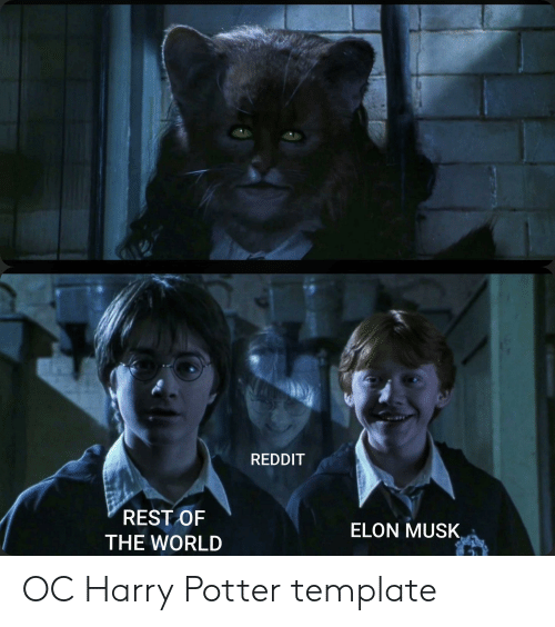 REDDIT REST OF ELON MUSK THE WORLD OC Harry Potter Template | Harry