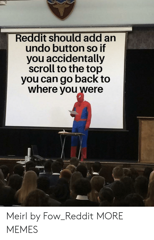 Dank, Memes, and Reddit: Reddit should add an  undo button so if  you accidentally  scroll to the top  you can go back to  where you were Meirl by Fow_Reddit MORE MEMES