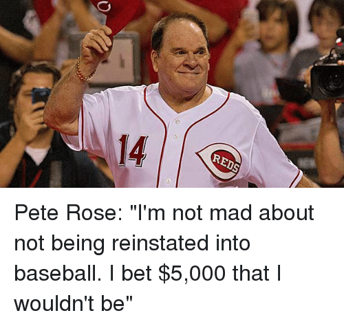 """reinstation: REDS Pete Rose: """"I'm not mad about not being reinstated into baseball. I bet $5,000 that I wouldn't be"""""""