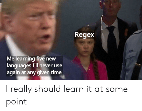 Learn It: Regex  Me learning five new  languages I'll never use  again at any given time I really should learn it at some point