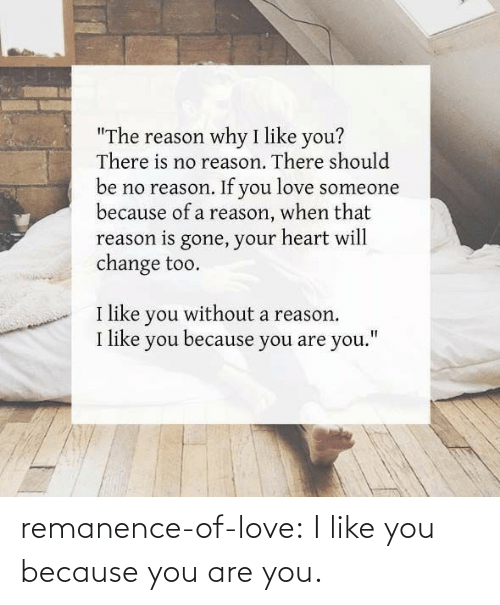 You Are: remanence-of-love:  I like you because you are you.
