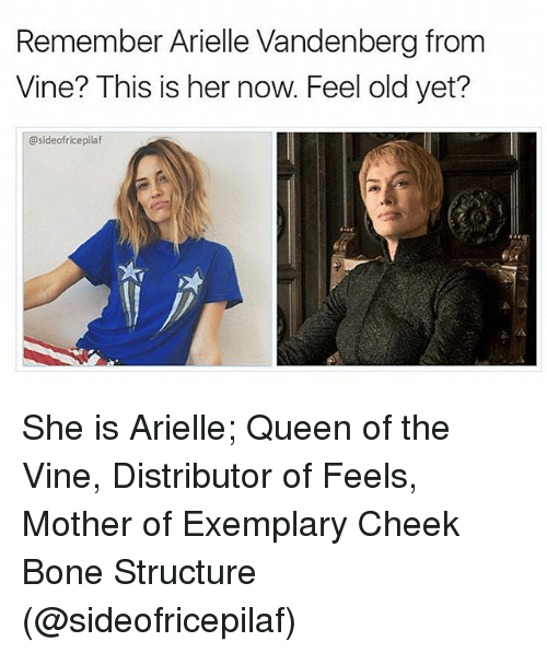 Boning: Remember Arielle Vandenberg from  Vine? This is her now. Feel old yet?  @sideofricepilaf She is Arielle; Queen of the Vine, Distributor of Feels, Mother of Exemplary Cheek Bone Structure (@sideofricepilaf)