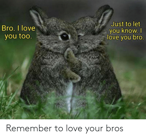 Love: Remember to love your bros