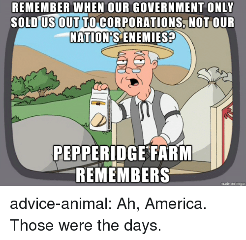 Advice, America, and Tumblr: REMEMBER WHEN OUR GOVERNMENT ONLY  SOLD US OUT TO CORPORATIONS NOT OUR  NATION'S ENEMIES?  PEPPERIDGE FARM  REMEMBERS  made on imqur advice-animal:  Ah, America. Those were the days.