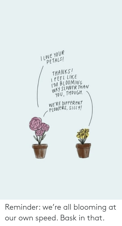 Our: Reminder: we're all blooming at our own speed. Bask in that.
