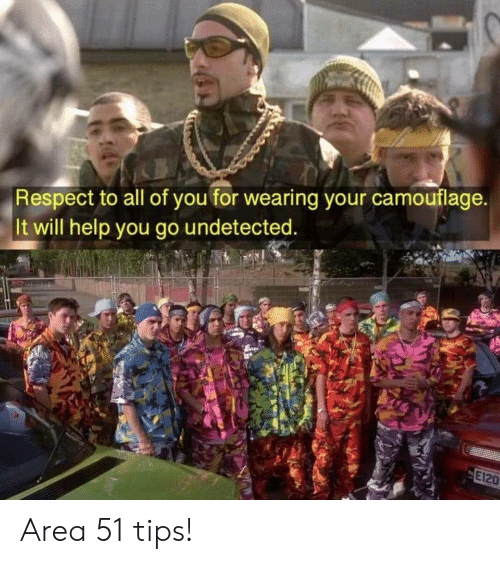 Respect, Help, and Area 51: Respect to all of you for wearing your camouflage.  It will help you go undetected.  E120 Area 51 tips!