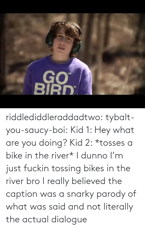 kid: riddlediddleraddadtwo:  tybalt-you-saucy-boi:  Kid 1: Hey what are you doing? Kid 2: *tosses a bike in the river* I dunno I'm just fuckin tossing bikes in the river bro    I really believed the caption was a snarky parody of what was said and not literally the actual dialogue