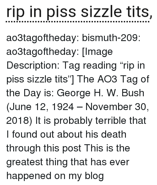"""Target, Tits, and Tumblr: rip in piss sizzle tits, ao3tagoftheday:  bismuth-209:  ao3tagoftheday:  [Image Description: Tag reading """"rip in piss sizzle tits""""]  The AO3 Tag of the Day is: George H. W. Bush (June 12, 1924– November 30, 2018)   It is probably terrible that I found out about his death through this post  This is the greatest thing that has ever happened on my blog"""