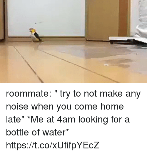 """homed: roommate: """" try to not make any noise when you come home late""""   *Me at 4am looking for a bottle of water* https://t.co/xUfifpYEcZ"""