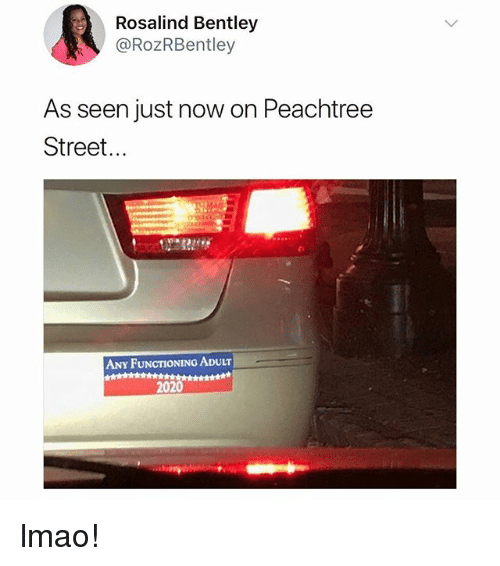 Lmao, Memes, and Bentley: Rosalind Bentley  @RozRBentley  As seen just now on Peachtree  Street...  ANY FUNCTIONING ADULT  2020 lmao!