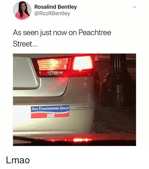 Lmao, Memes, and Bentley: Rosalind Bentley  @RozRBentley  As seen just now on Peachtree  Street...  ANY FUNCTIONING ADULT  2020 Lmao