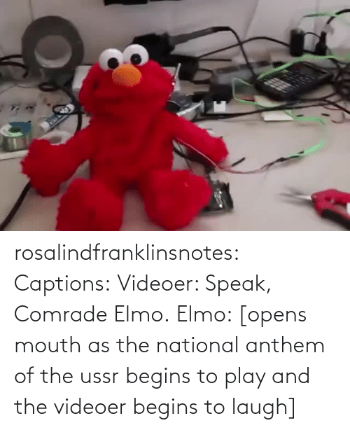 Elmo, Gif, and Tumblr: rosalindfranklinsnotes: Captions: Videoer: Speak, Comrade Elmo. Elmo: [opens mouth as the national anthem of the ussr begins to play and the videoer begins to laugh]