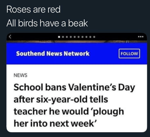 News, School, and Teacher: Roses are red  All birds have a beak  Southend News Network  FOLLOW  NEWS  School bans Valentine's Day  after six-year-old tells  teacher he would 'plough  her into next week'