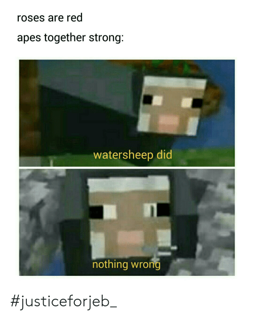 Strong, Red, and Roses: roses are red  apes together strong:  watersheep did  nothing wrong #justiceforjeb_