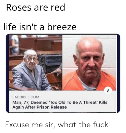 roses are red: Roses are red  life isn't a breeze  LADBIBLE.COM  Man, 77, Deemed 'Too Old To Be A Threat' Kills  Again After Prison Release Excuse me sir, what the fuck