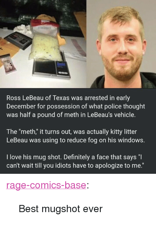 "Definitely, Love, and Police: Ross LeBeau of Texas was arrested in early  December for possession of what police thought  was half a pound of meth in LeBeau's vehicle.  The ""meth,"" it turns out, was actually kitty litter  LeBeau was using to reduce fog on his windows.  I love his mug shot. Definitely a face that says ""I  can't wait till you idiots have to apologize to me."" <p><a href=""http://ragecomicsbase.com/post/163252143887/best-mugshot-ever"" class=""tumblr_blog"">rage-comics-base</a>:</p>  <blockquote><p>Best mugshot ever</p></blockquote>"