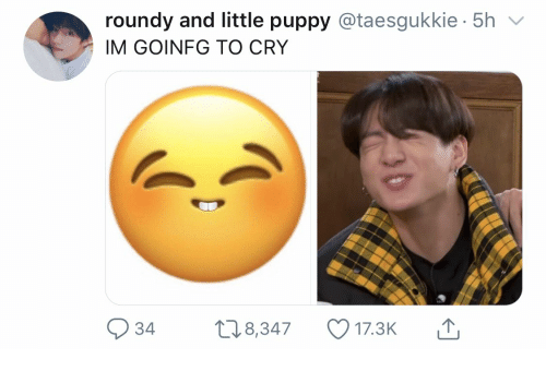 Puppy, Cry, and  Little Puppy: roundy and little puppy @taesgukkie 5h  IM GOINFG TO CRY  18,347  17.3K  34