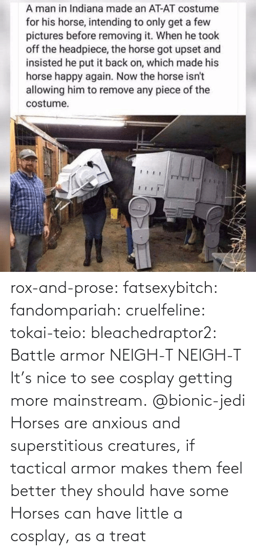 Should: rox-and-prose:  fatsexybitch:   fandompariah:  cruelfeline:  tokai-teio:  bleachedraptor2: Battle armor    NEIGH-T  NEIGH-T    It's nice to see cosplay getting more mainstream.    @bionic-jedi     Horses are anxious and superstitious creatures, if tactical armor makes them feel better they should have some    Horses can have little a cosplay, as a treat
