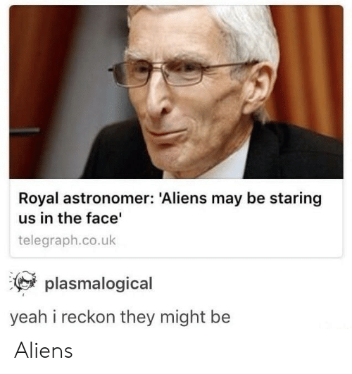 Telegraph: Royal astronomer: Aliens may be staring  us in the face  telegraph.co.uk  plasmalogical  yeah i reckon they might be Aliens