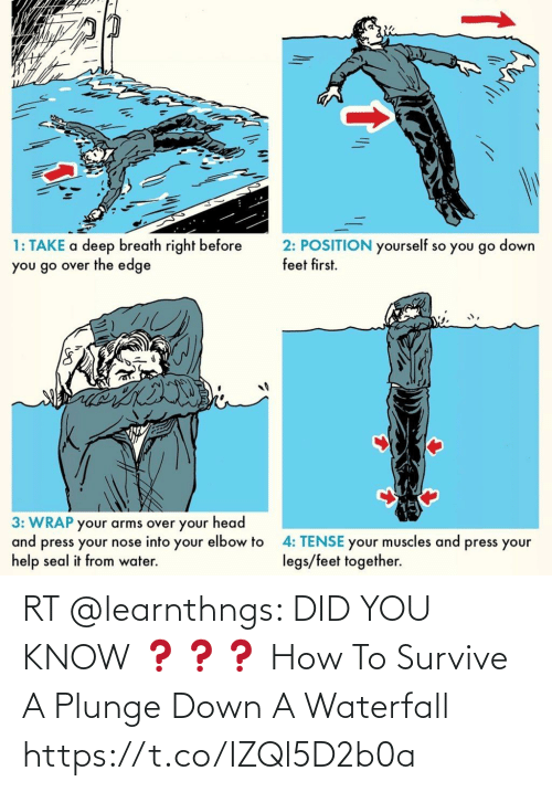 You Know: RT @learnthngs: DID YOU KNOW ❓❓❓ How To Survive A Plunge Down A Waterfall https://t.co/IZQl5D2b0a