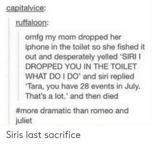 Romeo and Juliet: ruffaloon:  omfg my mom dropped her  iphone in the toilet so she fished it  out and desperately yelled 'SIRI I  DROPPED YOU IN THE TOILET  WHAT DOI DO' and siri replied  Tara, you have 28 events in July  That's a lot.' and then died  #more dramatic than romeo and  juliet Siris last sacrifice