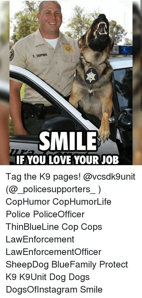 Jobbing: S. DUFFNER  SMILE  IF YOU LOVE YOUR JOB Tag the K9 pages! @vcsdk9unit (@_policesupporters_ ) CopHumor CopHumorLife Police PoliceOfficer ThinBlueLine Cop Cops LawEnforcement LawEnforcementOfficer SheepDog BlueFamily Protect K9 K9Unit Dog Dogs DogsOfInstagram Smile