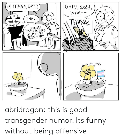 Bad, Funny, and Target: S IT BAD, DoC?  WHA--  HMM.  IT sLeMS  OF A LITT LE  02 abridragon: this is good transgender humor. Its funny without being offensive