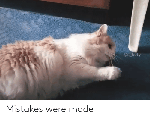 Mistakes: @s_koty Mistakes were made