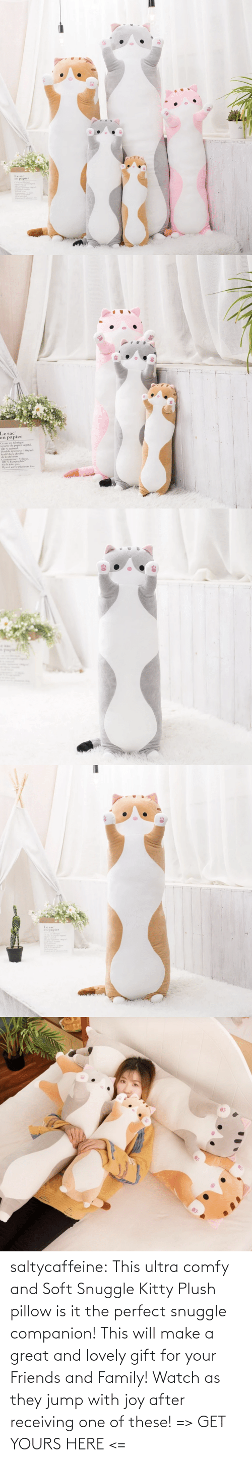yours: saltycaffeine: This ultra comfy and Soft Snuggle Kitty Plush pillow is it the perfect snuggle companion! This will make a great and lovely gift for your Friends and Family! Watch as they jump with joy after receiving one of these! => GET YOURS HERE <=
