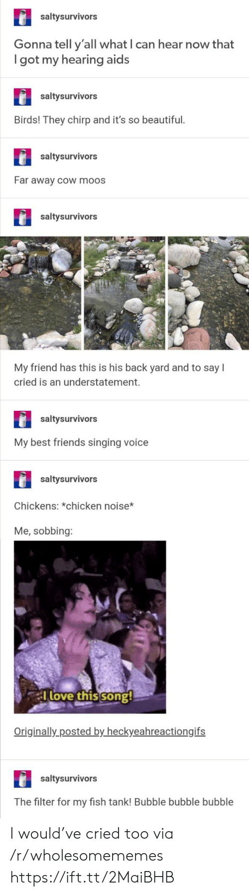 sobbing: saltysurvivors  Gonna tell y'all what I can hear now that  got my hearing aids  saltysurvivors  Birds! They chirp and it's so beautiful.  saltysurvivors  Far away cOw moos  saltysurvivors  My friend has this is his back yard and to say  cried is an understatement.  saltysurvivors  My best friends singing voice  saltysurvivors  Chickens: *chicken noise*  Me, sobbing:  Tlove this song!  Originally posted by heckyeahreactiongifs  saltysurvivors  The filter for my fish tank! Bubble bubble bubble I would've cried too via /r/wholesomememes https://ift.tt/2MaiBHB