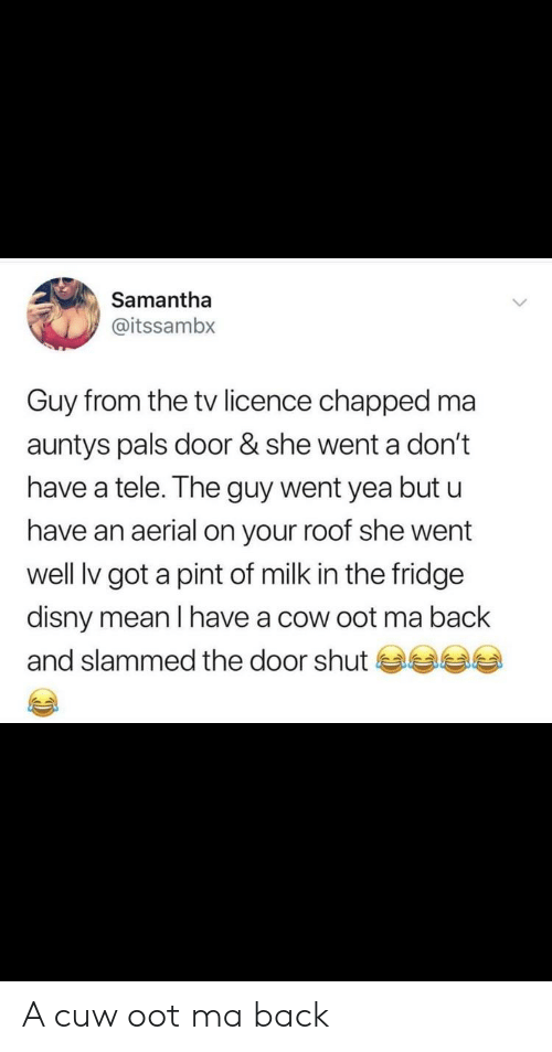 Disny: Samantha  @itssambx  Guy from the tv licence chapped ma  auntys pals door & she went a don't  have a tele. The guy went yea but u  have an aerial on your roof she went  well lv got a pint of milk in the fridge  disny mean I have a cow oot ma back  and slammed the door shut 부부 A cuw oot ma back