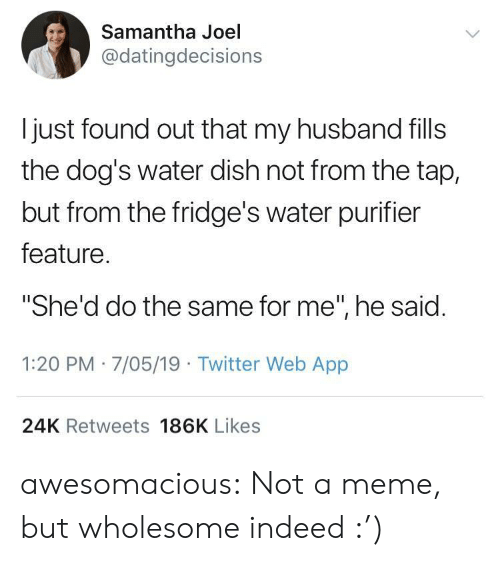 """Dogs, Meme, and Tumblr: Samantha Joel  @datingdecisions  l just found out that my husband fills  the dog's water dish not from the tap,  but from the fridge's water purifier  feature  """"She'd do the same for me"""", he said  1:20 PM 7/05/19 Twitter Web App  24K Retweets 186K Likes awesomacious:  Not a meme, but wholesome indeed :')"""