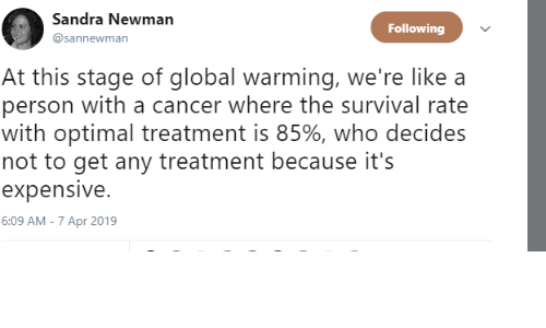 Newman, Cancer, and Who: Sandra Newman  @sannewman  Following  At this stage of qglobal warming, we're like a  person with a cancer where the survival rate  with optimal treatment is 85%, who decides  not to get any treatment because it's  expensive.  6:09 AM - 7 Apr 2019