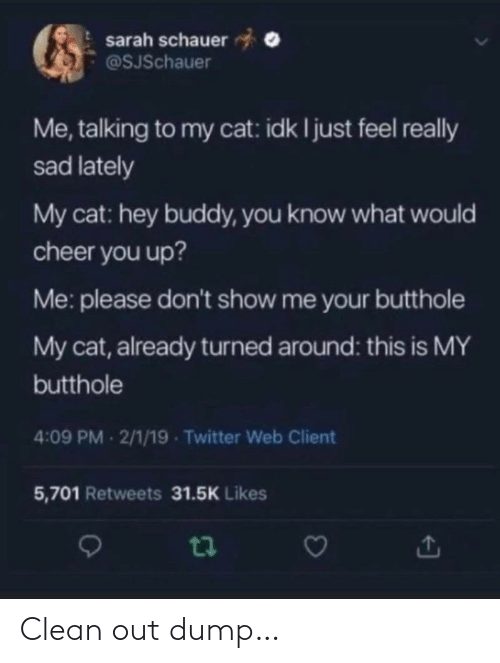 lately: sarah schauer  @SJSchauer  Me, talking to my cat: idk I just feel really  sad lately  My cat: hey buddy, you know what would  cheer you up?  Me: please don't show me your butthole  My cat, already turned around: this is MY  butthole  4:09 PM 2/1/19 - Twitter Web Client  5,701 Retweets 31.5K Likes Clean out dump…