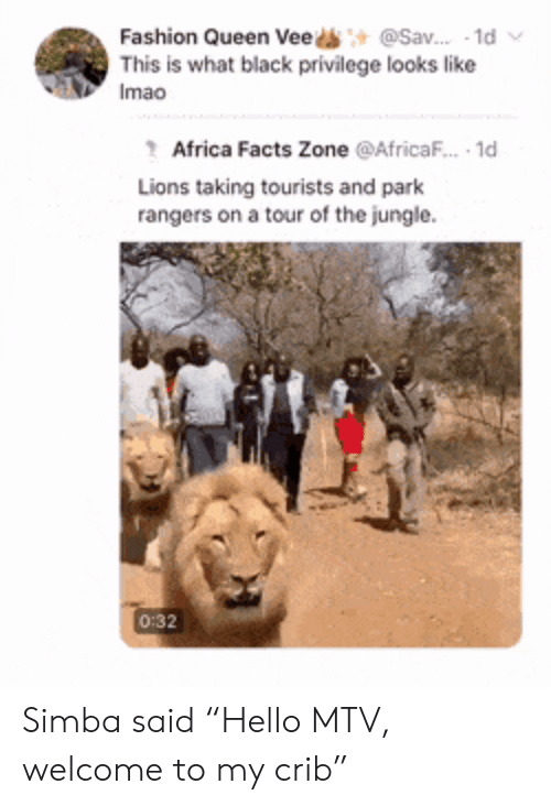 "Rangers: @Sav. 1d  Fashion Queen Vee  This is what black privilege looks like  Imao  Africa Facts Zone @AfricaF.. 1d  Lions taking tourists and park  rangers on a tour of the jungle  0:32 Simba said ""Hello MTV, welcome to my crib"""