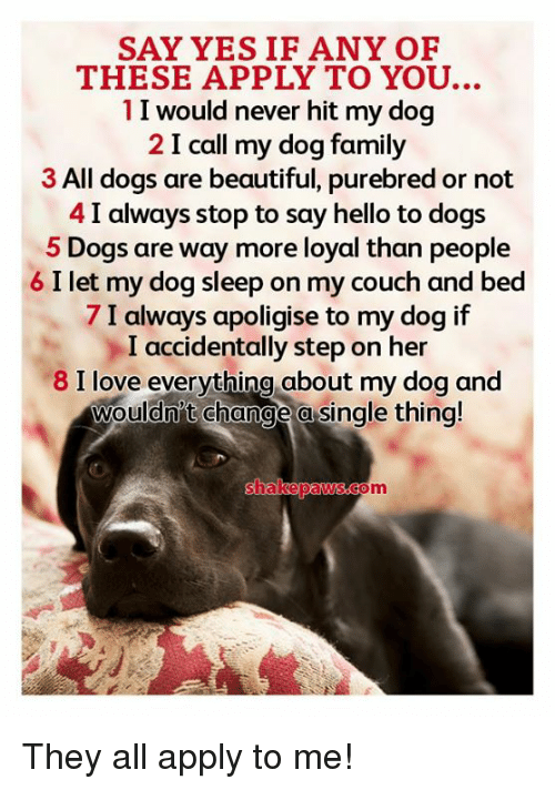Beautiful, Dogs, and Family: SAY YES IF ANY OF  THESE APPLY TO YOU.  1I would never hit my dog  2 I call my dog family  3 All dogs are beautiful, purebred or not  4 I always stop to say hello to dogs  5 Dogs are way more loyal than people  6 I let my dog sleep on my couch and bed  7 I always apoligise to my dog if  I accidentally step on her  8 I love everything about my dog and  wouldn't change a single thina!  om They all apply to me!