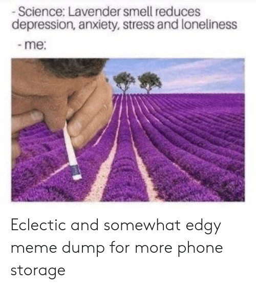 Meme, Phone, and Smell: -Science: Lavender smell reduces  depression, anxiety, stress and loneliness  -me: Eclectic and somewhat edgy meme dump for more phone storage
