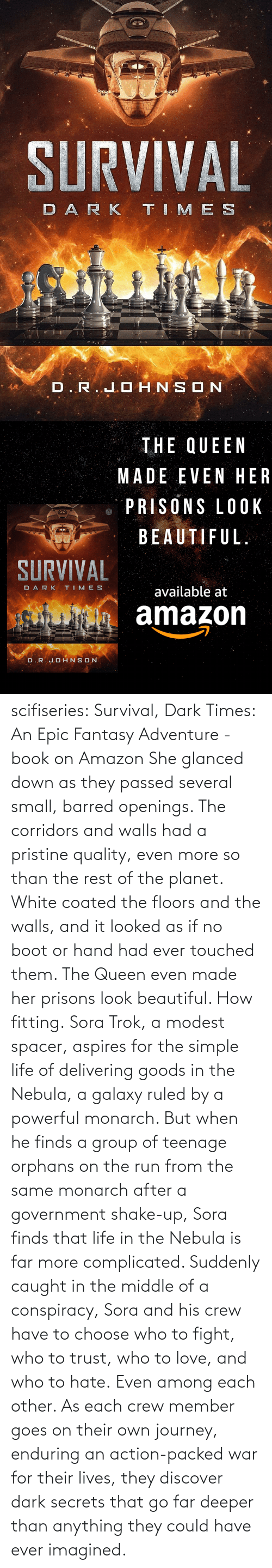 same: scifiseries: Survival, Dark Times: An Epic Fantasy Adventure - book on Amazon  She glanced down as they  passed several small, barred openings. The corridors and walls had a  pristine quality, even more so than the rest of the planet. White coated  the floors and the walls, and it looked as if no boot or hand had ever  touched them.  The Queen even made her prisons look beautiful.  How fitting. Sora  Trok, a modest spacer, aspires for the simple life of delivering goods  in the Nebula, a galaxy ruled by a powerful monarch. But when he finds a  group of teenage orphans on the run from the same monarch after a  government shake-up, Sora finds that life in the Nebula is far more complicated.  Suddenly  caught in the middle of a conspiracy, Sora and his crew have to choose  who to fight, who to trust, who to love, and who to hate. Even among each other.  As  each crew member goes on their own journey, enduring an action-packed  war for their lives, they discover dark secrets that go far deeper than  anything they could have ever imagined.